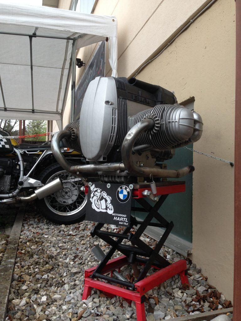 Artgerechte Begrüßung bei Motorrad Hartl
