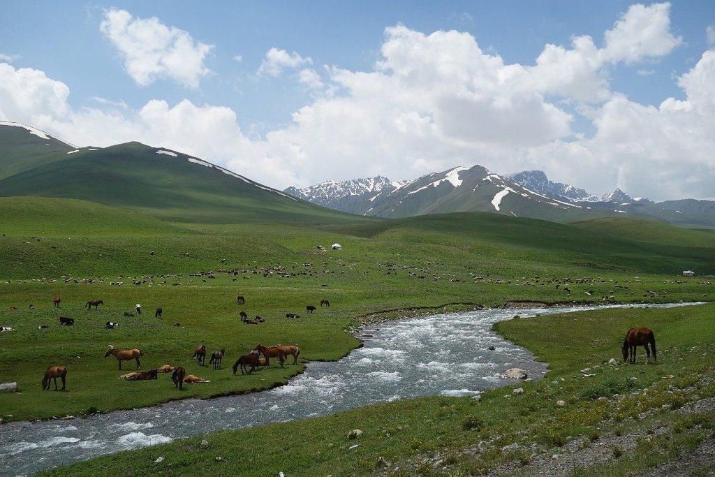 Ein atemberaubendes Bild können wir in Kirgistan sehen.